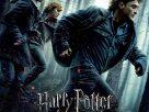 Harry Potter: And The Deathly Hallows Part 1 (2010) | แฮร์รี่ พอตเตอร์: เครื่องรางยมฑูต ตอน 1