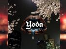 [ເນື້ອເພງ – ຟັງເພງ] Lipstick – YODA