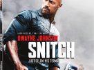 Snitch (2013) | โคตรคนขวางนรก